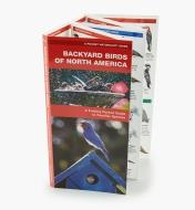 LA254 - Backyard Birds Pocket Guide