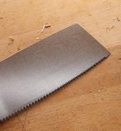 Gros plan des dents de la scie kataba convexe à tronçonner