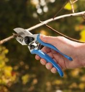 A high-quality anvil pruner cuts through a deadwood stem