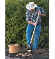 A man digging potatoes with the Spading Fork