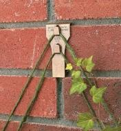 Brick Clip holding a trellis on a brick wall