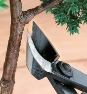 Trimming a branch with a Concave Cutter