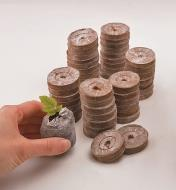 Several stacks of coir pellets, with one pellet expanded and holding a seedling