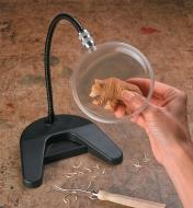 Flex-Neck Desk Magnifier used to magnify a small bear carving