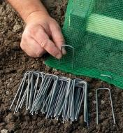 Inserting Garden Staples through the edge of some shade cloth to secure it to the ground