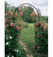 Garden Arch supporting climbing roses in a garden