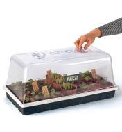La miniserre est montrée avec des plantes en pot et le thermohygromètre compact, vendus séparément.