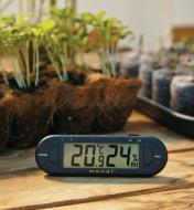 Hygrometer/Thermometer sitting next to seedlings growing in plantable pots
