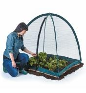XC515 - Pop-Up Plant Dome