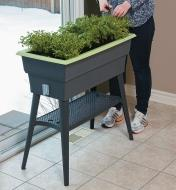 A woman clips herbs growing in the Self-Watering Raised Planter
