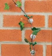 Wall Trellis Kit attached to a brick wall