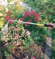 Trigger Valve attached to a water wand, spraying flowers in a garden