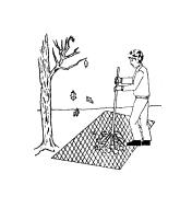 Illustrated example of a man raking leaves onto a section of garden netting
