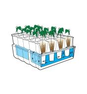 Diagram demonstrating how seedlings receive water through the capillary mat