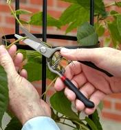 """8"""" pruning shears being used to prune a vine"""