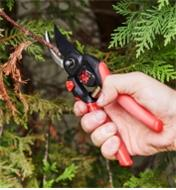 AB581 - Adjustable Hand Pruner
