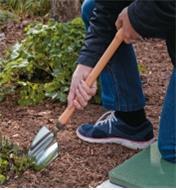 Digging in a garden using the Perennial Spade