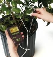 Inserting the probe of the Soil pH Meter into the soil of a potted plant