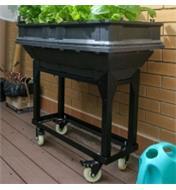 Support mobile Vegepod supportant un petit bac de culture Vegepod utilisé pour faire pousser des plantes sur une terrasse
