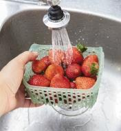 Rinsing strawberries in the 1.6 qt. (1.5 litre) Produce Keeper