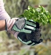 Wearing women's garden gloves to transfer a small plant