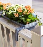 Derrière d'une jardinière pour balustrade et clôture