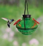 A hummingbird feeds from one of the two flower-shaped ports on the glass hummingbird feeder