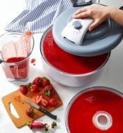 Making fruit rolls with fresh strawberries using the smooth sheet in the food dehydrator