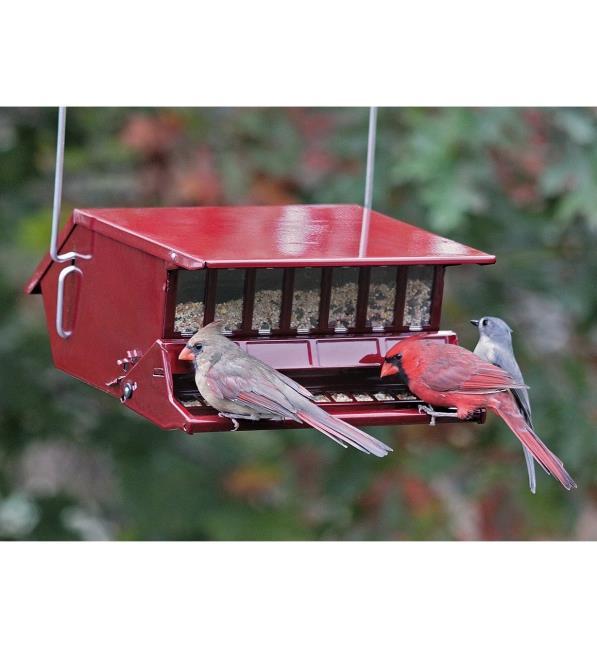 Rlevolexy Bird Feeder Hanging Colibr/ì Feeder Nettare per Uccelli con 8 Fori di Alimentazione