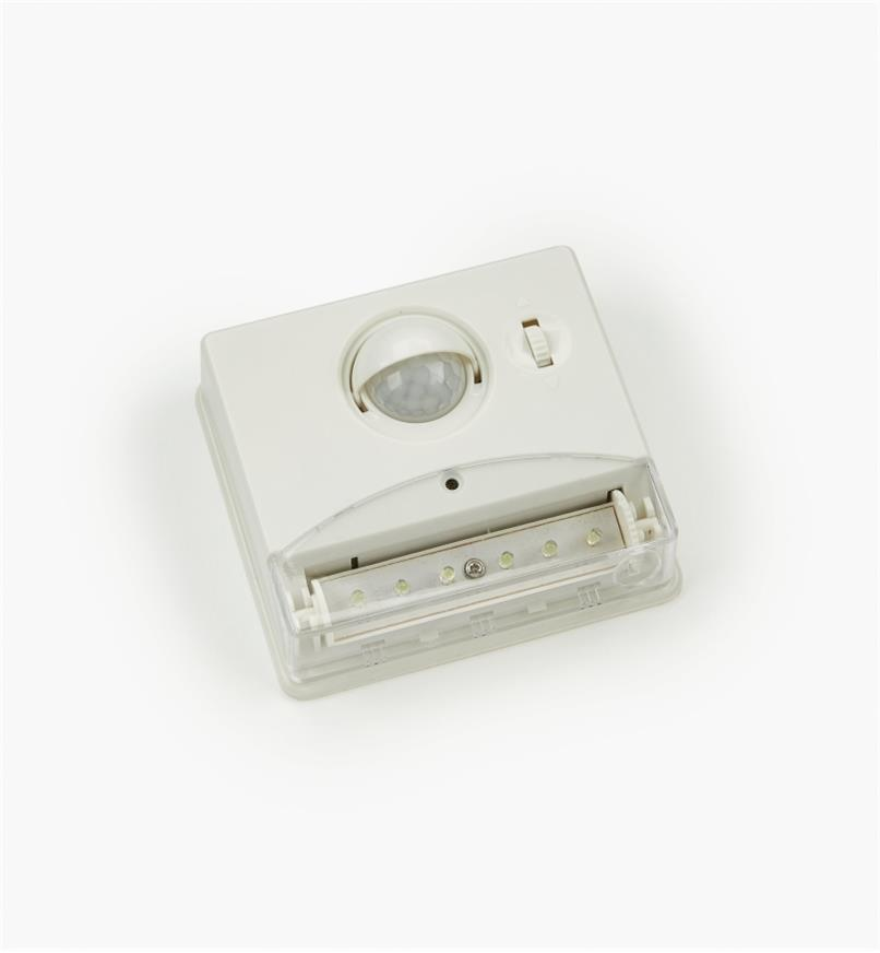 09A0602 - Controlled Beam PIR Light