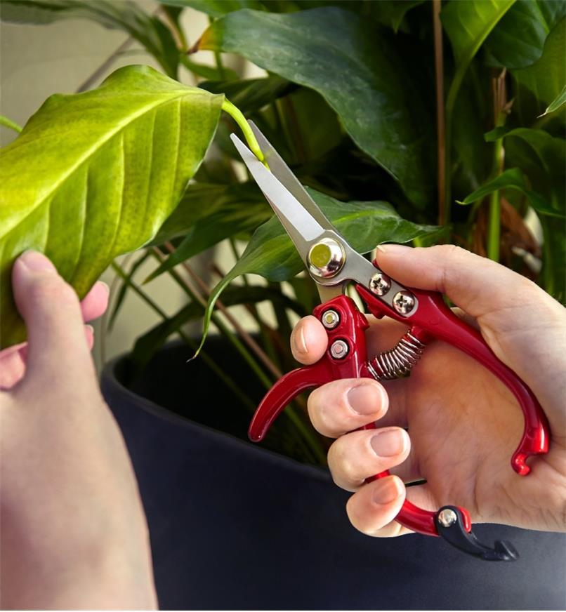 AB379 - Petites cisailles pour le jardin, la paire