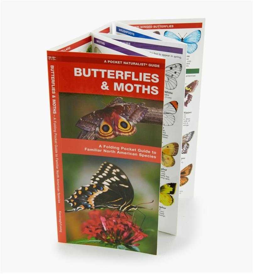 LA263 - Butterflies & Moths Pocket Guide