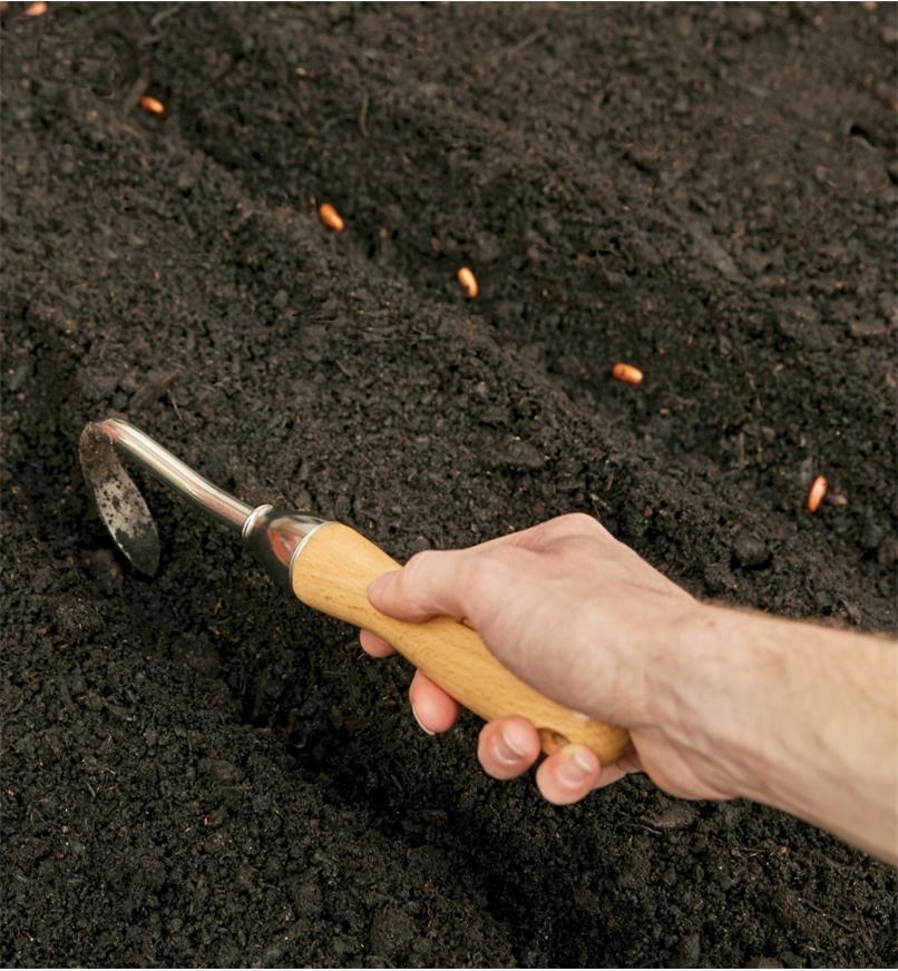 Personne creusant un sillon avec le sarcloir à une dent Lee Valley pour planter des semences