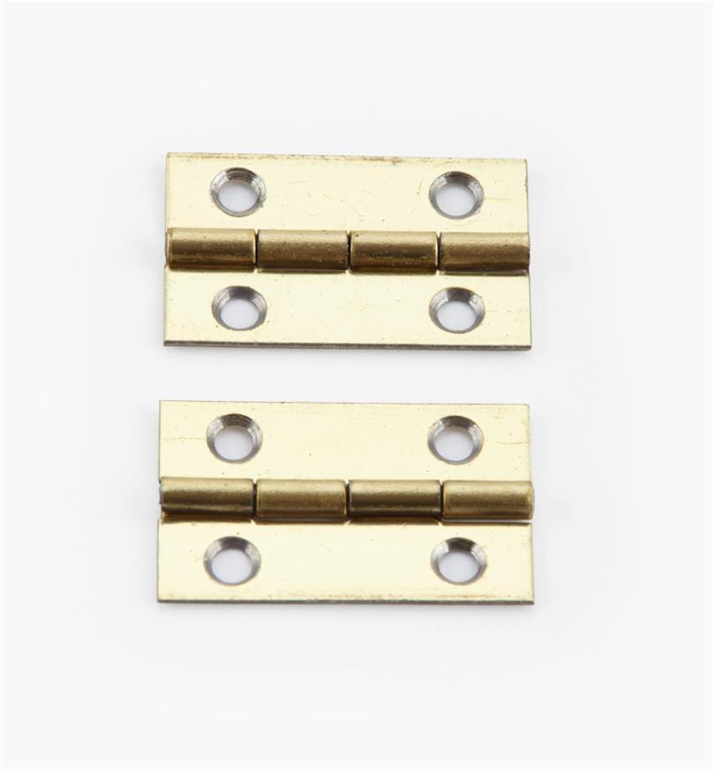 00D3004 - 20mm x 13mmSmall Box Hinges, pr.