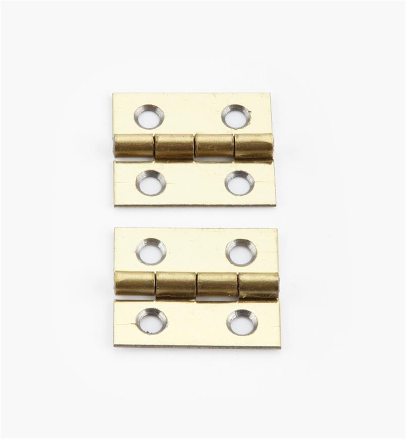 00D3010 - 20mm x 17mmSmall Box Hinges, pr.