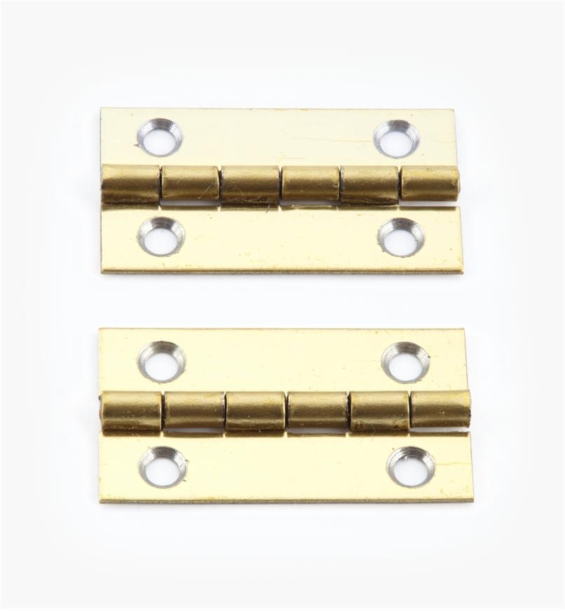 00D3011 - 30mm x 17mmSmall Box Hinges, pr.