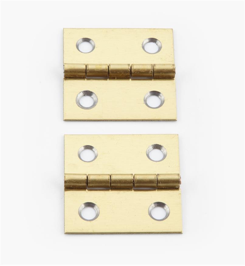 00D3020 - 25mm x 26mmSmall Box Hinges, pr.