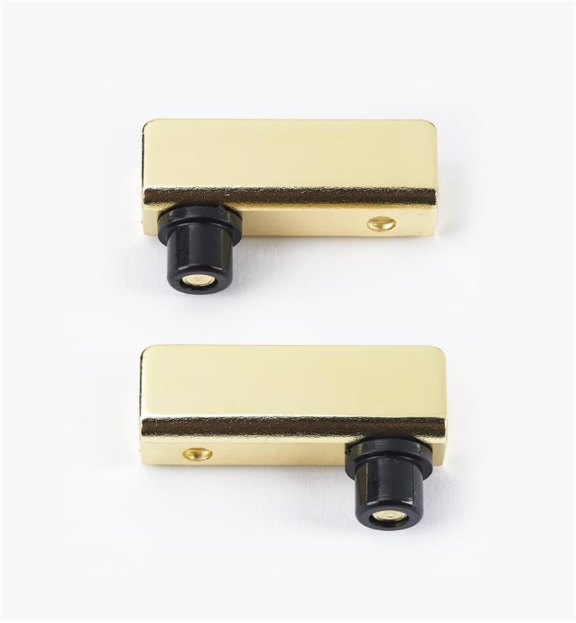 00W0401 - Brass Pin-Pivot Hinges, pair