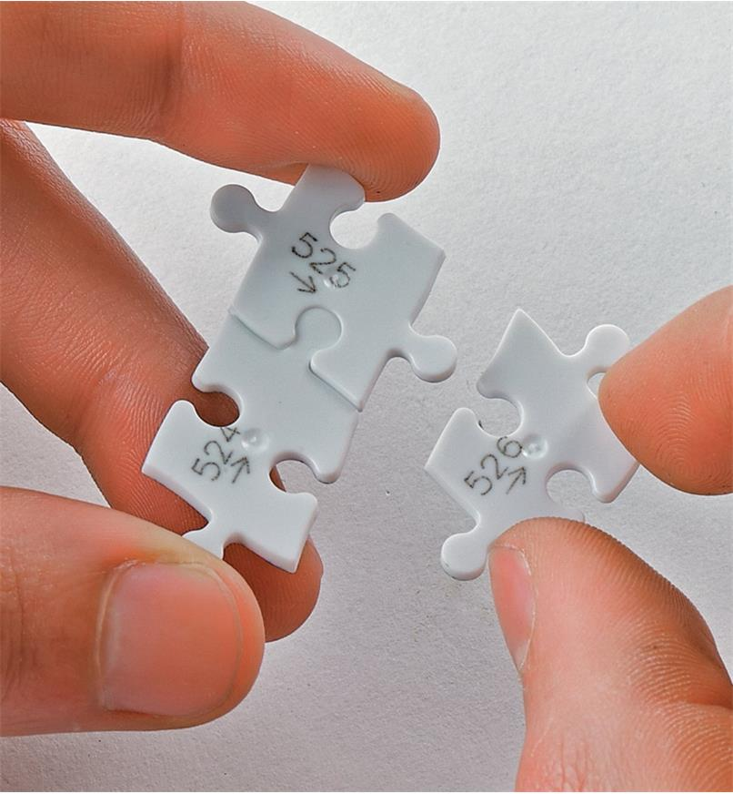 Holding three pieces of the puzzle, showing the reverse side