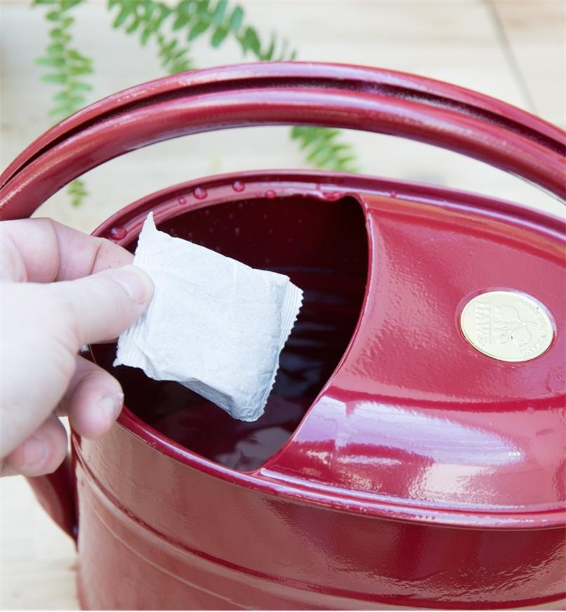 Placing a compost tea bag in a watering can