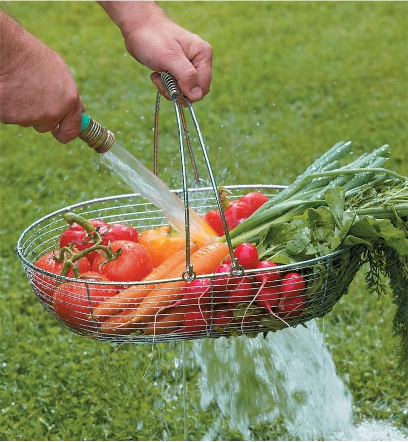 Large Gardener's Wash Basket filled with vegetables being rinsed with a hose