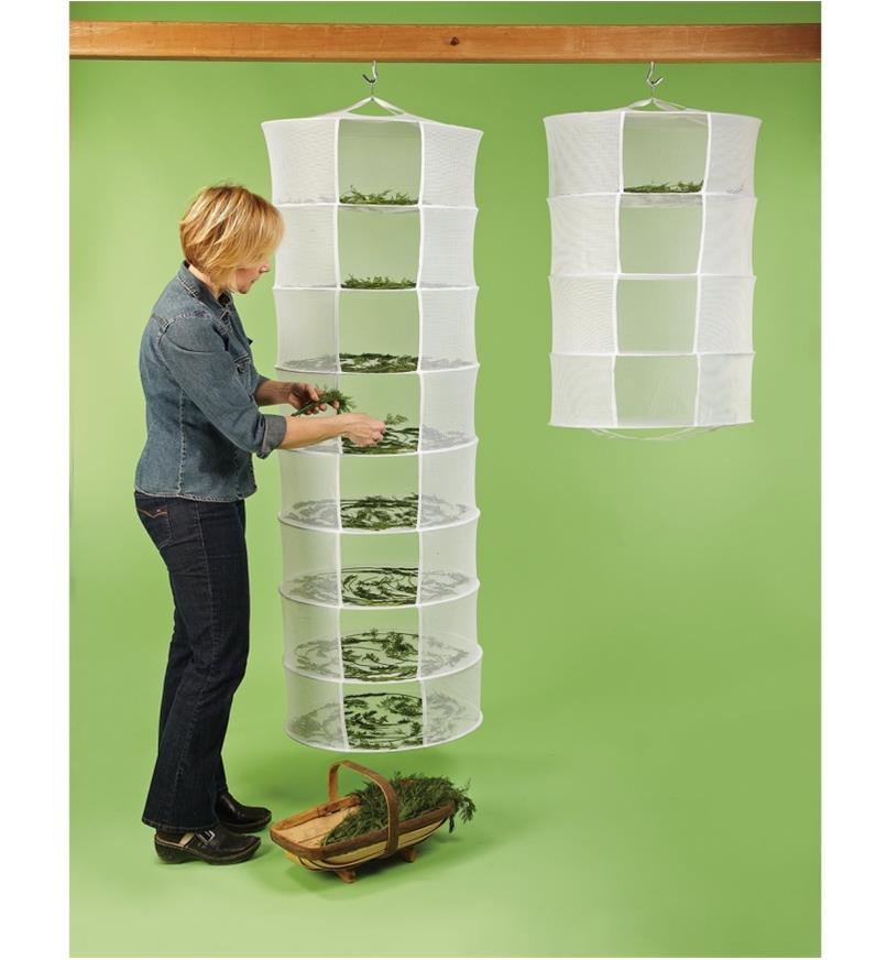 A woman places herbs on the shelves of an eight-tier Herb Dryer