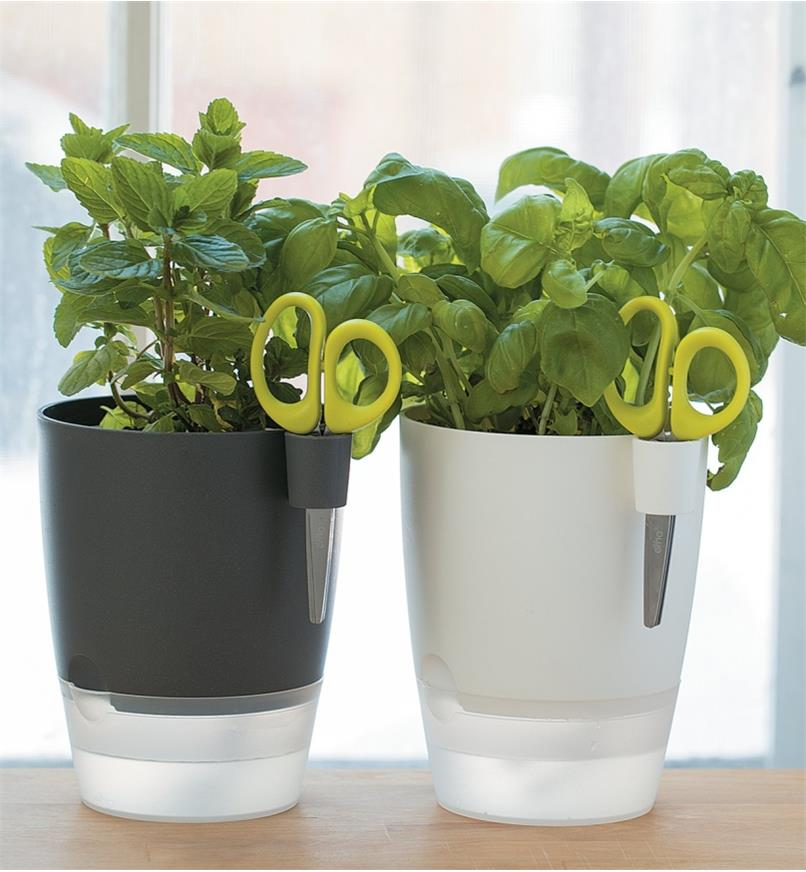 Gray and white Elho Windowsill Herb Pots side by side