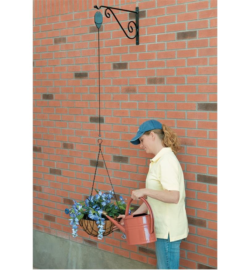 Planter basket on the Hanging Basket Pulley lowered for watering