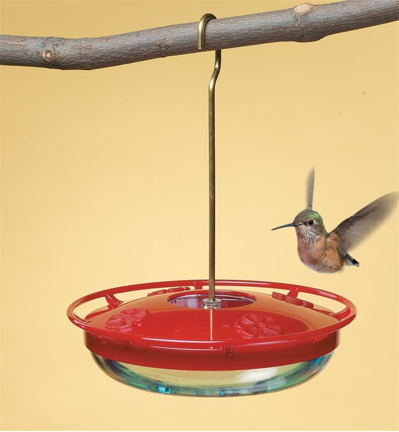 Hummingbird Feeder hanging from a branch with a hummingbird hovering over it