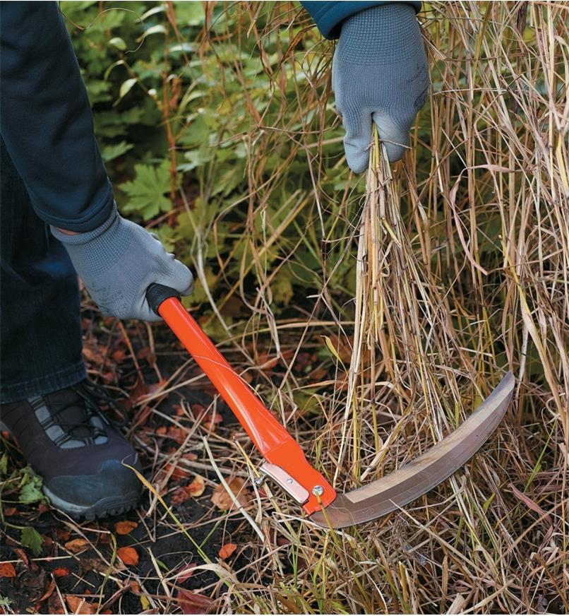 Folding Sickle being used to cut back tall grass