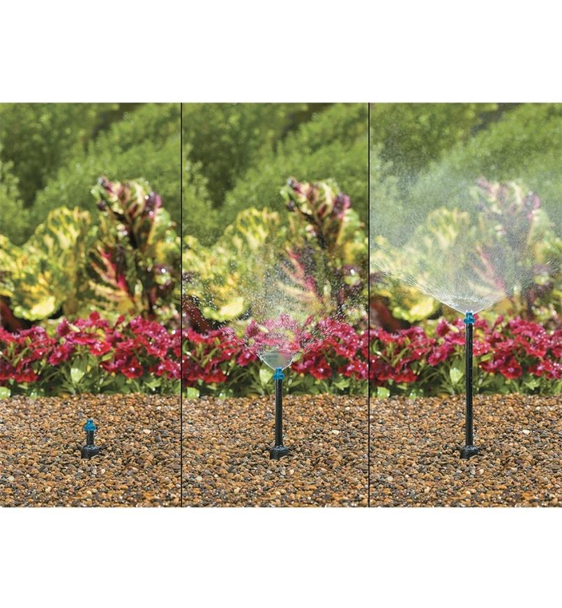 XC254 - Pop-Up Sprinkler