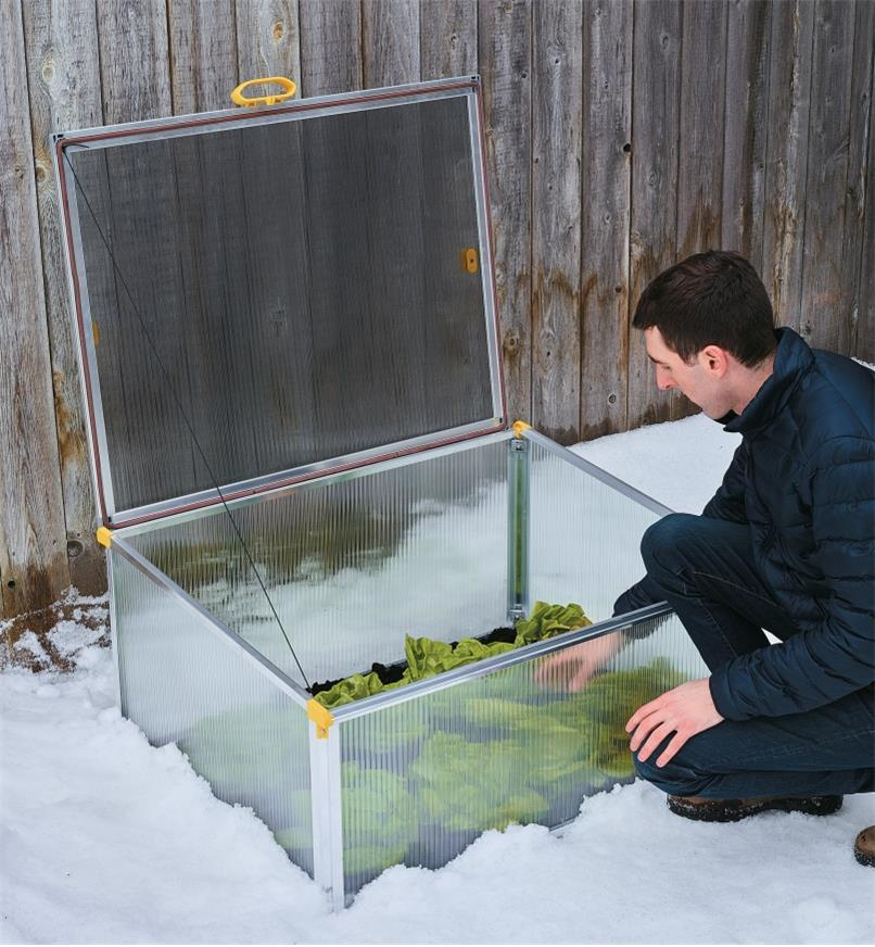 A man tends his plants in the Double-Walled Cold Frame