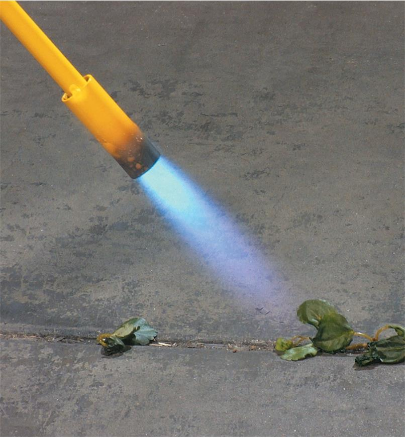 Close-up of flame aimed at weeds on a walkway