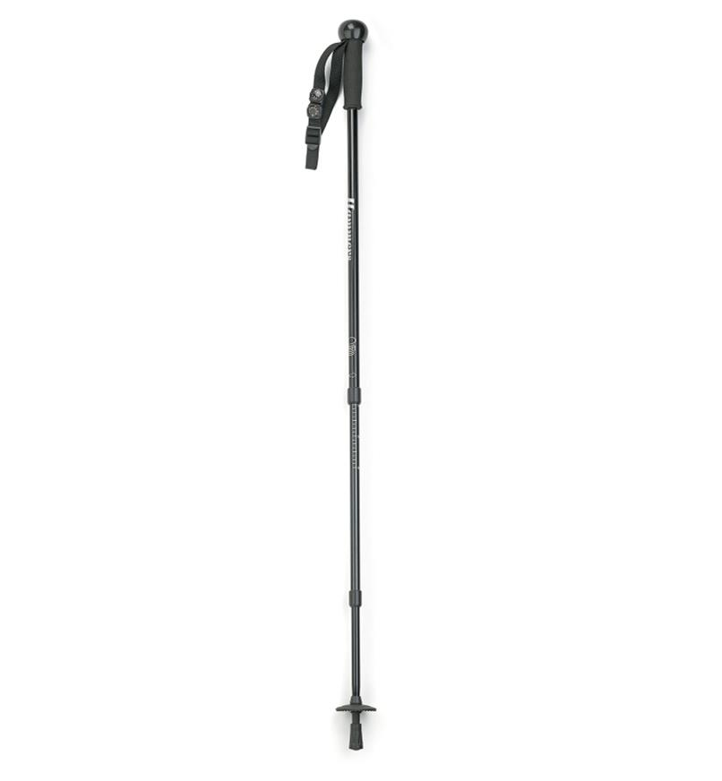 45K4217 - Hiking Stick